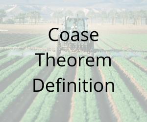 Coase Theorem Definition